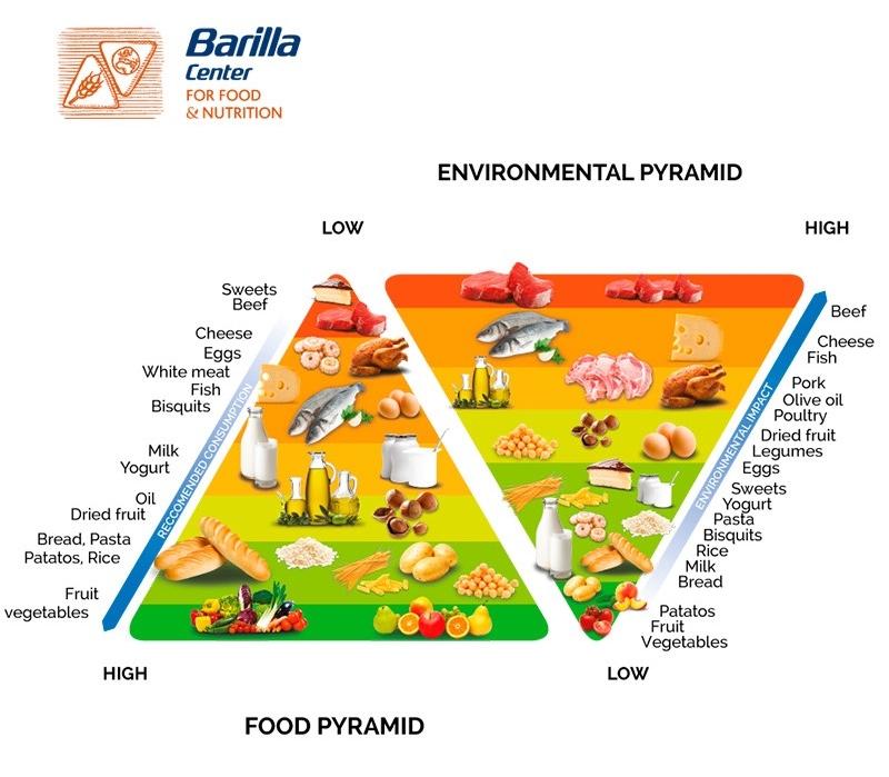 environmental-pyramid.jpeg