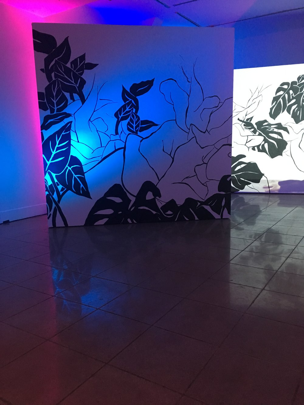 "Installation View of ""Afterlight"""