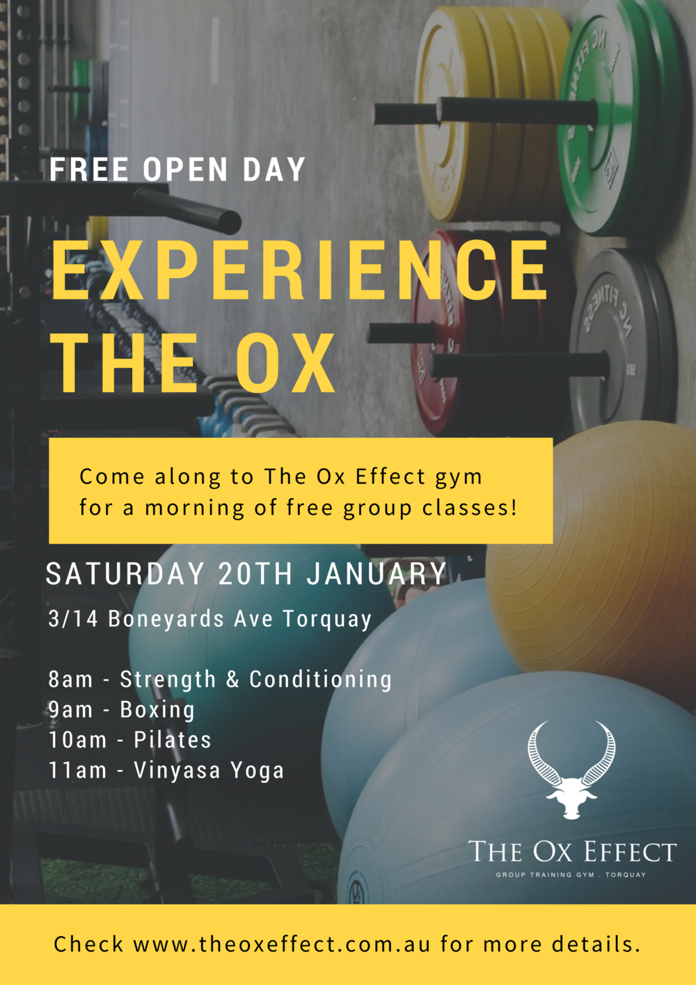 The Ox Effect - Open Day.png