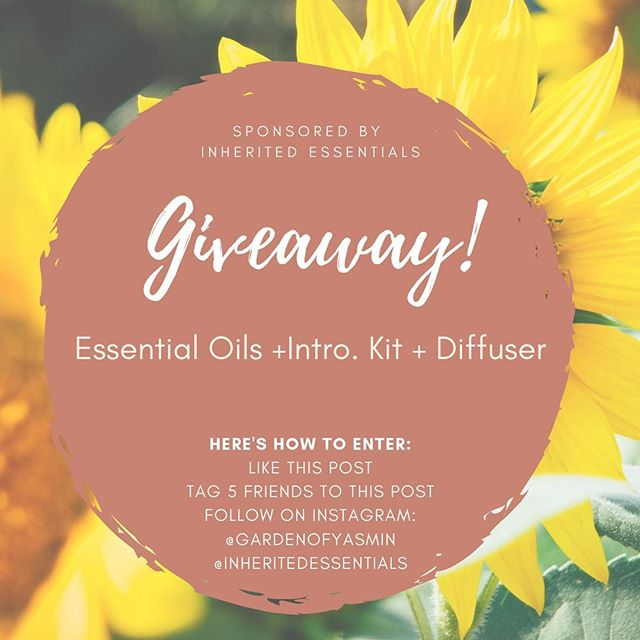 "✨🌿GIVEAWAY🌿✨⁣⁣⁣⁣⁣ ⁣⁣⁣⁣⁣ Essential Oils + Diffuser + Intro Kit 🧘🏽‍♀️⁣⁣⁣⁣⁣ ⁣⁣⁣⁣⁣ Essential oils are concentrated plant extracts that retain the natural smell and flavor, or ""essence,"" of their source. It's the plants own defense mechanism. When sourced, harvested and distilled correctly, essential oils can be therapeutic and can help with all aspects of health: mental, physical, emotional.⁣⁣⁣⁣⁣ ⁣⁣⁣⁣⁣ LEMON OIL 🍋 is multi purposeful. It's powerful cleansing agent that purifies the air & surfaces, and can be used as a non-toxic cleaner throughout the home. Lemon is also frequently added to food to enhance flavor. Taken orally, lemon provides cleansing and digestive benefits & supports healthy respiratory function.  When diffused, lemon has been shown to help improve mood.⁣⁣⁣⁣⁣ ⁣⁣⁣⁣⁣ ⁣⁣⁣⁣⁣ LAVENDER is often considered a must-have oil, due to its versatile use; including calming and relaxing properties that promote peaceful sleep and ease feelings of tension. Its calming and relaxing qualities, when taken orally, continue to be lavender's most notable attributes. Applied topically, lavender is frequently used to reduce the appearance of skin blemishes. For therapeutic use, add to bath water or apply to the temples and the back of the neck. Add a few drops of lavender to pillows, bedding, or bottoms of feet to relax and prepare for a restful night's sleep.⁣⁣⁣⁣⁣ ⁣⁣⁣⁣⁣ PEPPERMINT plant is a hybrid of water-mint and spearmint. A high menthol content—like that found in the doTERRA Peppermint essential oil—distinguishes the best quality peppermint from other products. Peppermint is frequently used in toothpaste and chewing gum for oral hygiene. But can also be used to support healthy breathing and respiratory function, promotes alertness and makes you feel energized, acts as a cooling agent, delicious flavor to add to your glass of water and relive head tension.⁣⁣⁣⁣⁣ sponsored by @inheritedessentials ⁣⁣⁣⁣⁣ #Giveaway #healthiswealth #essentialoilsgiveaway #essentialoils #veganhealth #selfcare #mentalhealth"