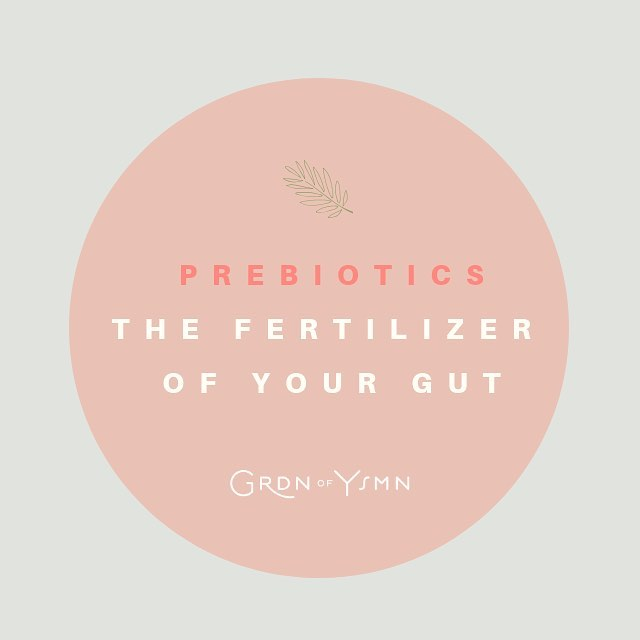 Prebiotics, the fertilizer of your gut, occupying your colon and bowel. 🌱⁣ ⁣ Without prebiotics, probiotics couldn't do their job. Reminder, prebiotics aren't bacteria! Rather, prebiotics are the fiber and starches that our gut bacteria live on. A diverse, flourishing, well-balanced micro-biome can help keep us better digest our food, resist sicknesses, support our mood, better brain health, reduce bloating, and so much more. Also, more fiber is generally a great thing (for digestion, detoxification, weight balance…).⁣ ⁣ Eat your prebiotics in fibrous and starchy foods first, and then supplement with a supplement if you want even more. I like simple acacia fiber, raw dandelion root, bananas, raw leeks, and raw or cooked onions. ⁣ ⁣ ⁣ ⁣ ⁣ ⁣ #healthiswealth #healthtips #plantbasedhealth #naturopathic #foodismedicine #balance #selfcare #mentalhealth