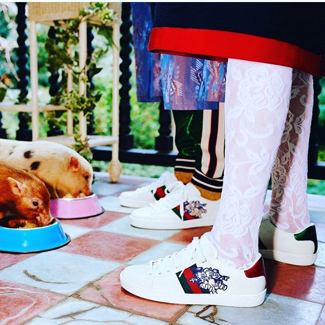Gucci bringing us the inspo for #CNY2019 �