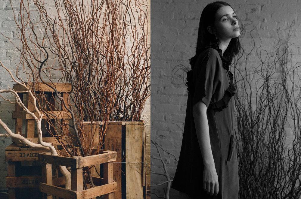 Francesca_Beltran_Website_Seek_001.jpg