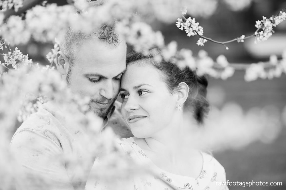 london_ontario_wedding_photographer-raw_footage_photography-engagement_session-airport_session-airplane-balloons-apple_orchard-spring_blooms-apple_blossoms038.jpg
