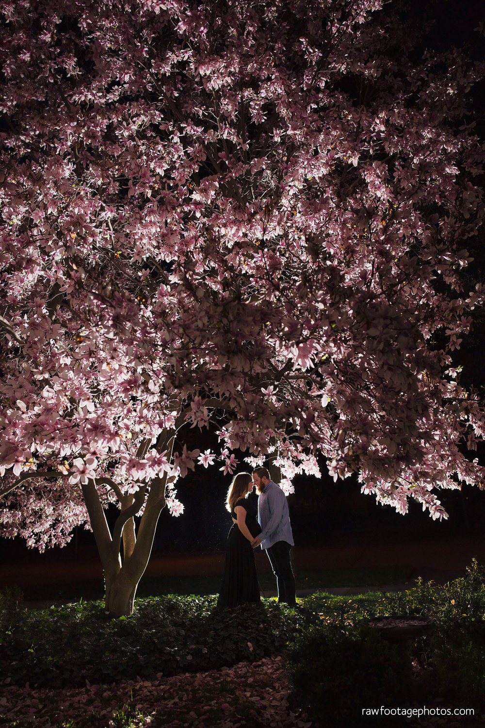 london_ontario_photographer-maternity_session-magnolia_blossoms-magnolia_tree-night_shot-lifestyle_photography-raw_footage_photography008.jpg