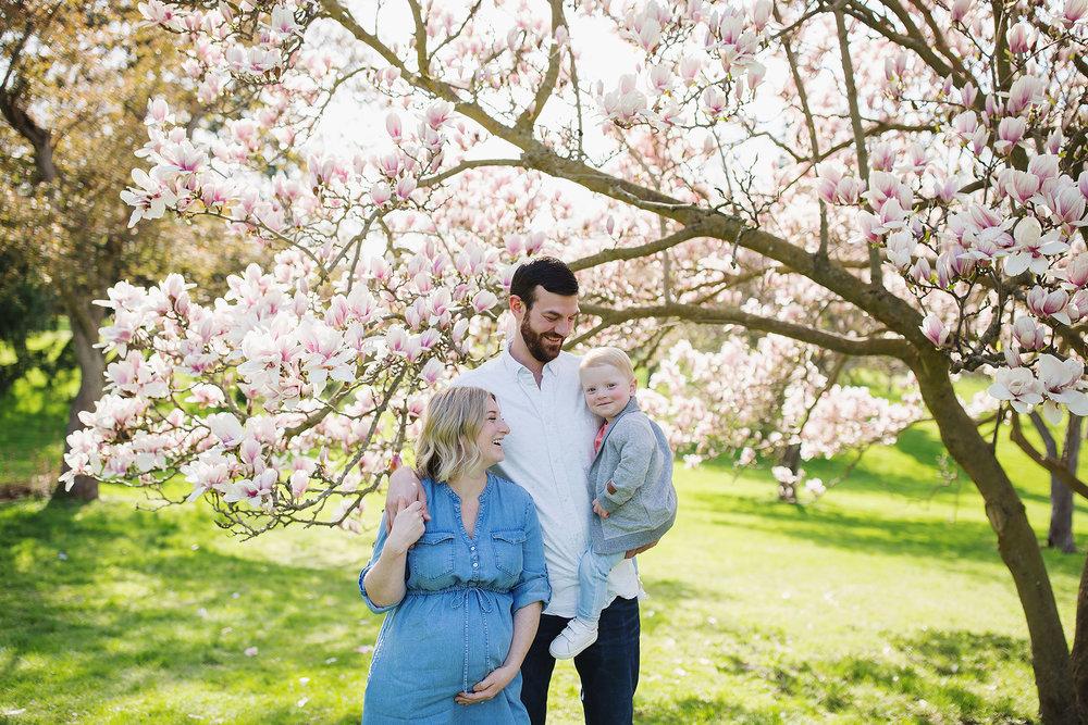 london_ontario_family_photographer-raw_footage_photography-spring_blossom_mini_sessions-magnolia-springbank_park009.jpg
