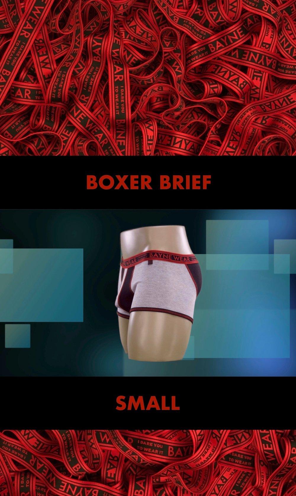 GARMENT TAG 2018 BACK BOXER BRIEF SMALL 2.jpg