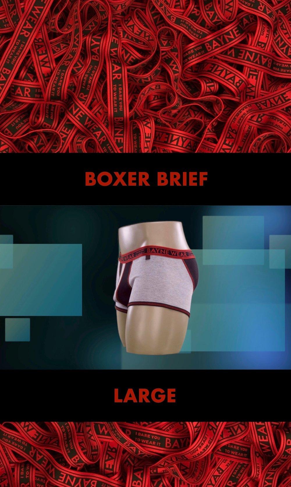 GARMENT TAG 2018 BACK BOXER BRIEF LARGE 2.jpg