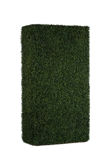 Boxwood Walls