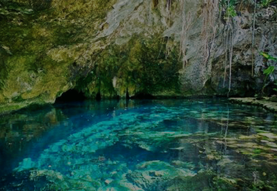 GRAND CENOTE - Chief among the cenotes of the Riviera Maya is El Gran Cenote or Grand Cenote, located about twenty minutes inland from Tulum on the road to Coba. As its name implies, this is a very large cenote set amongst jungle greenery. Among its attractions are the caverns that are accessible from the cenote. You can easily swim or snorkel to investigate their interiors which hold underwater stalagmites, stalactites, and columns that are geologic marvels.Tour Duraction: 3 hourWhat to Wear: please wear a swimsuit, water shoes and suitable clothing(rashguard or long sleeve shirt; light long pants; sun glasses; sun hat or cap)