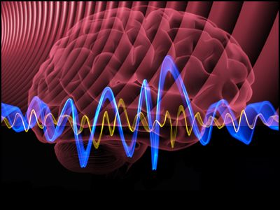 brainwave1.jpg