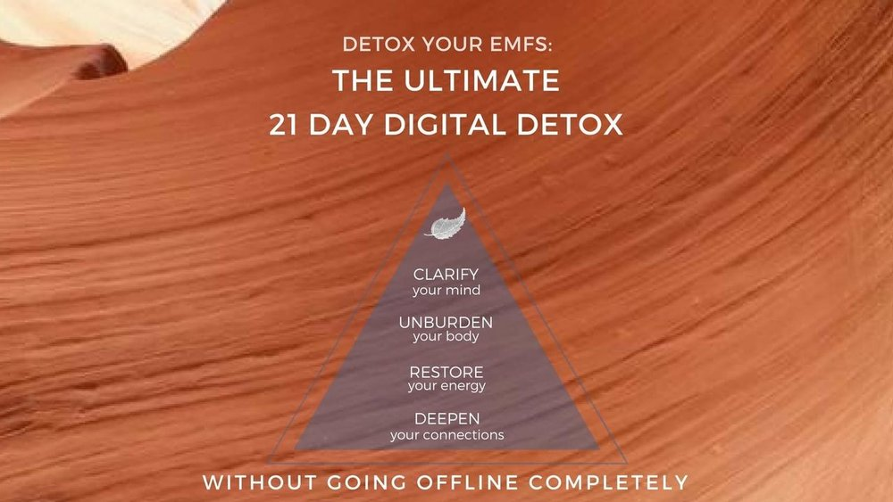 21 Day Digital Detox from leading expert Sophia Ryan Gushée