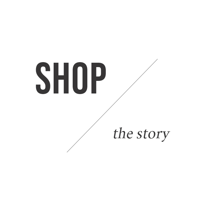shop the story title.jpg