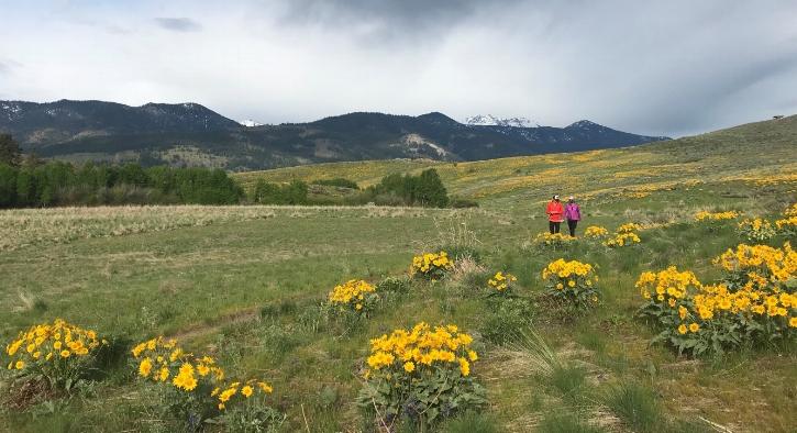 Riser Trail Pic.jpg