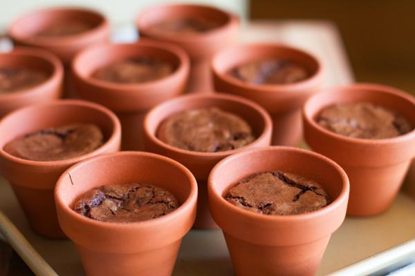 Flowerpot4(1).jpg