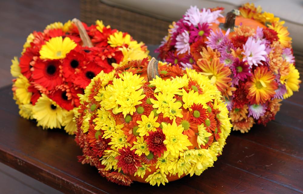 FlowerPumpkins1.jpg