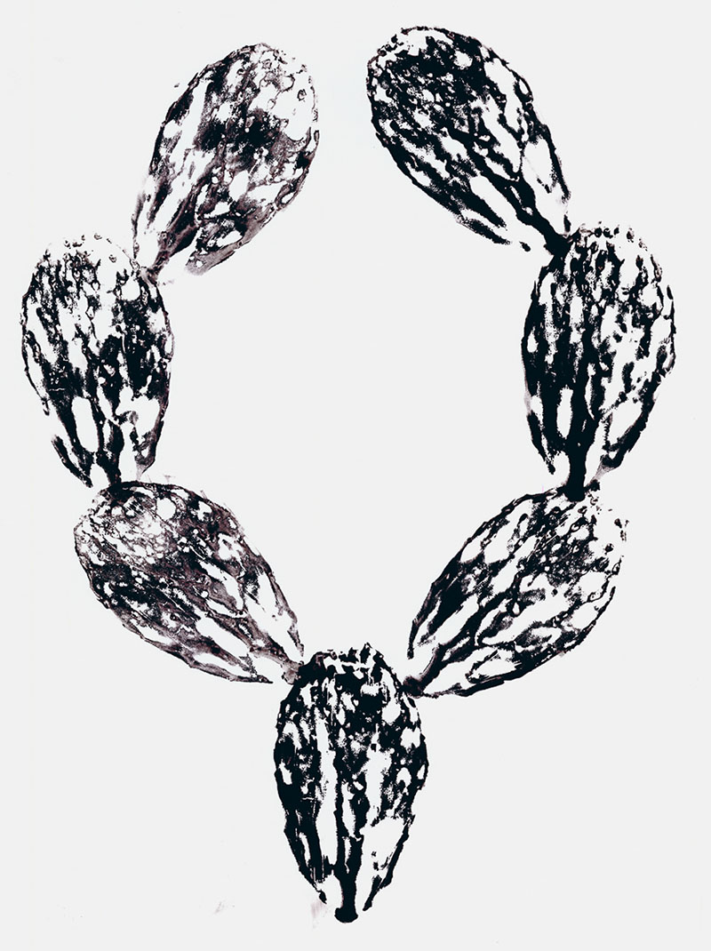 "Nopalito  (1) Cactus Monoprint on paper, 18""x 24"""