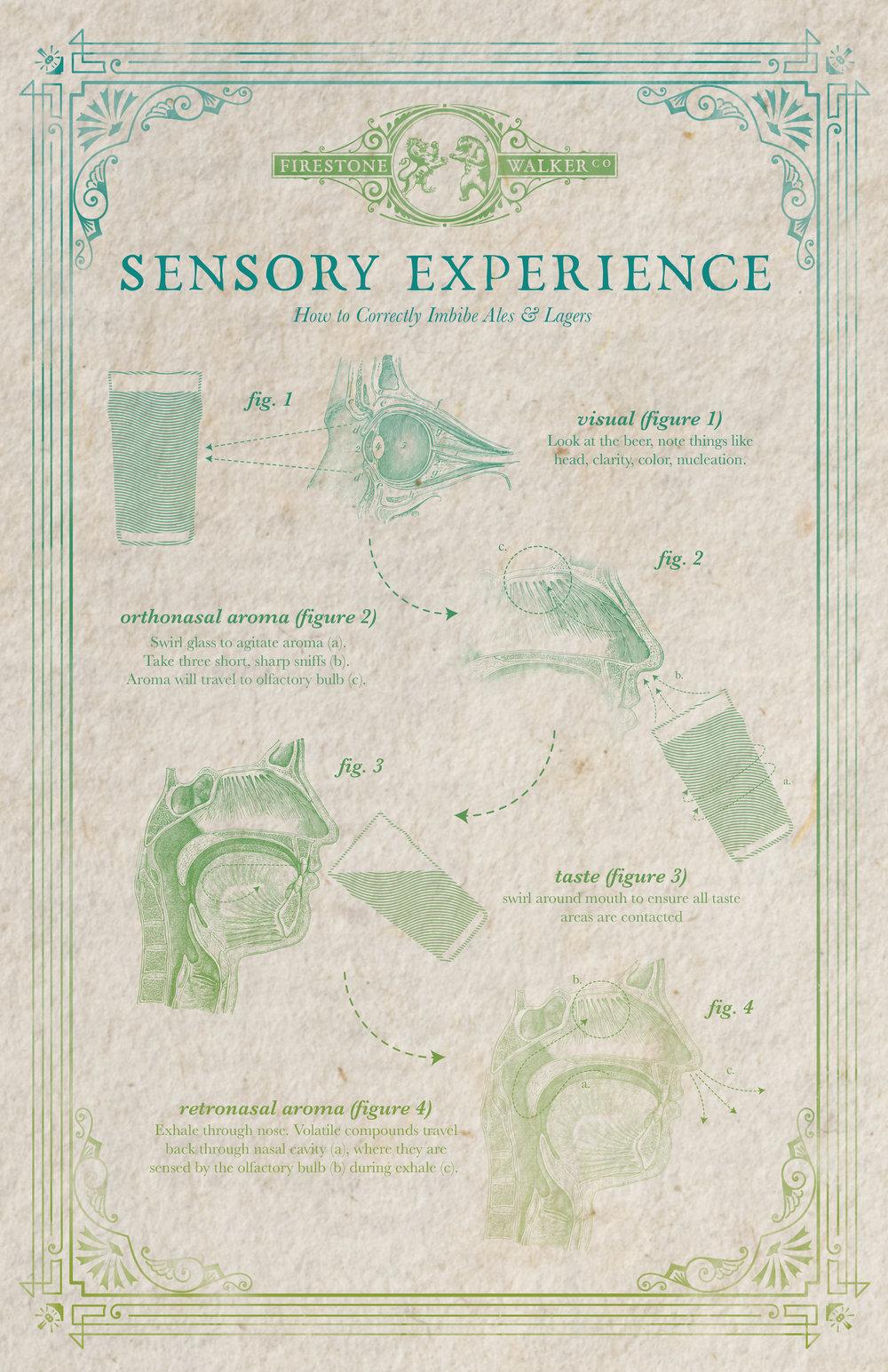 sensoryexperience_poster.jpg