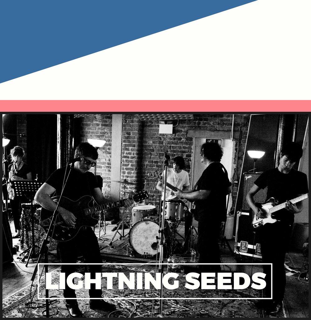 Copy of Lightning Seeds