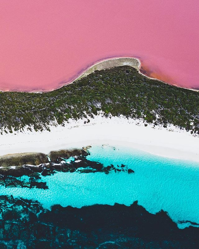 Hellooooo lovelies! 👋😘 So, I'd always heard of these 'pink lakes' in @westernaustralia and I'd even seen a lot of pictures of them. You know, the ones where you think the colours are saturated to buggery, and you just 'know' they're not real? 🙄 WELL!! I'm here to tell you, they ARE REAL!! I take back all my disbelief and apologise to all before me who claimed this colour to be true! 😱😯 Until you see it with your own eyes it's very hard to believe it, but once you do! Wow! 😅 Flying with @goldfields_airservices from Esperance along the coastline of the incredible archipelago of islands in the Great Bite, and over Cape Le Grand NP, was sight enough to behold already, but on to Middle Island where this beauty resides, and seeing it for the first time... all I can say is... it's totally mind blowing!! 🤯💗💗💗💗 But hey, I'm quickly learning that it's #justanotherdayinwa 😉💗