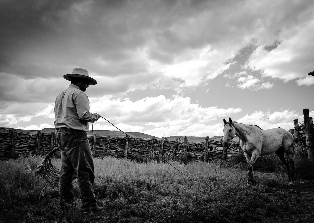 My Buckaroo Man - See Jessica's most intimate collection of cowboy life as her relationship with her husband erases the normal photographer boundaries.