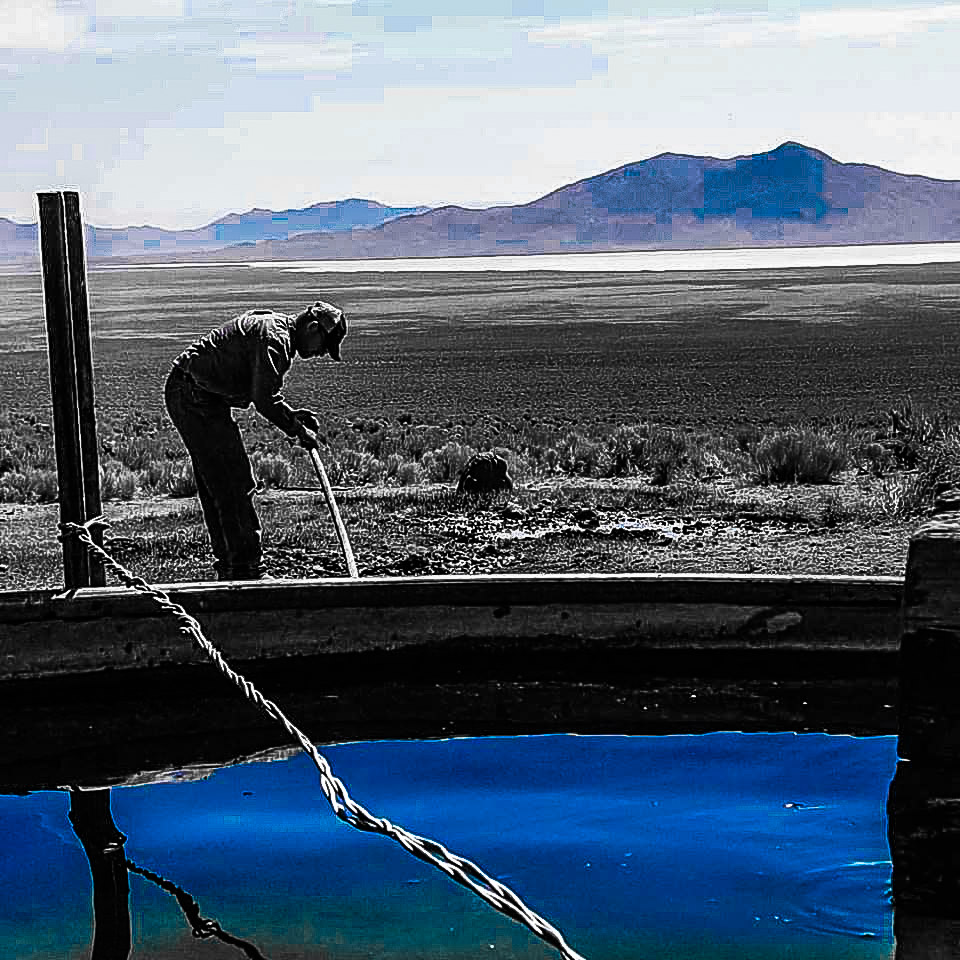 Fixing water on the desert -