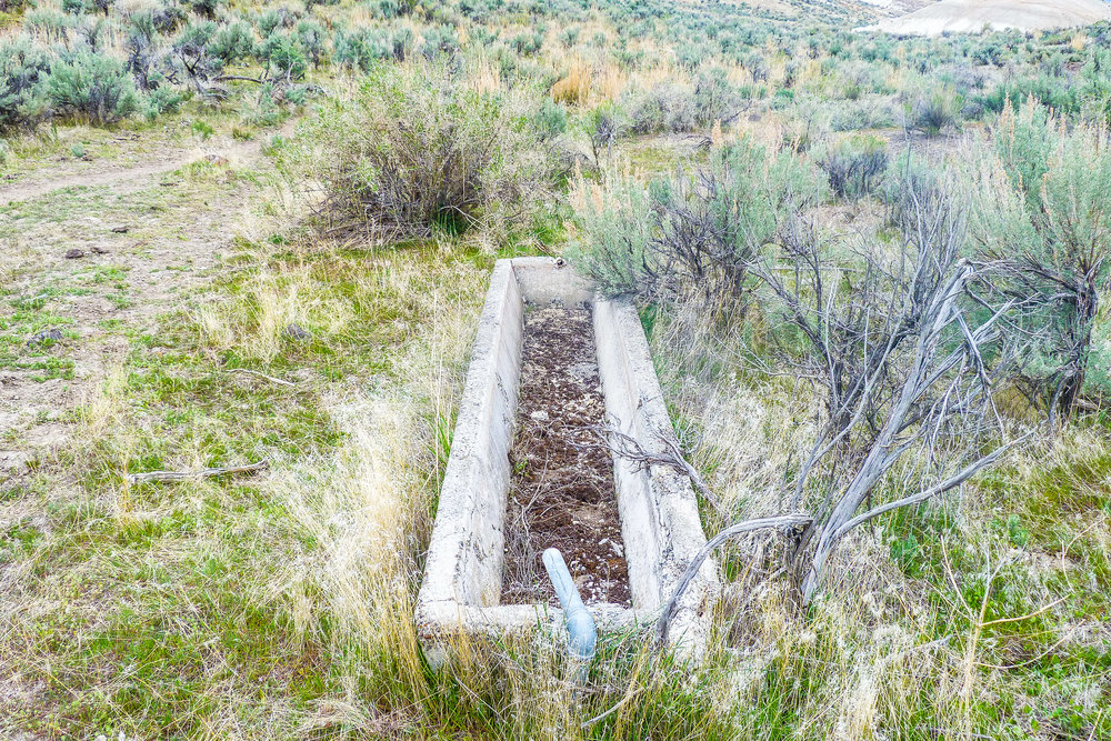 One of multiple abandon troughs, all from different times.