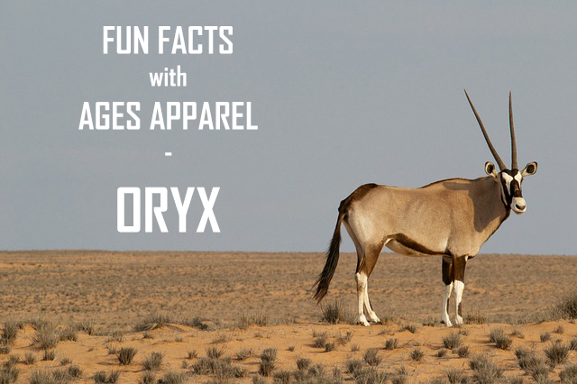 oryxheader.jpg