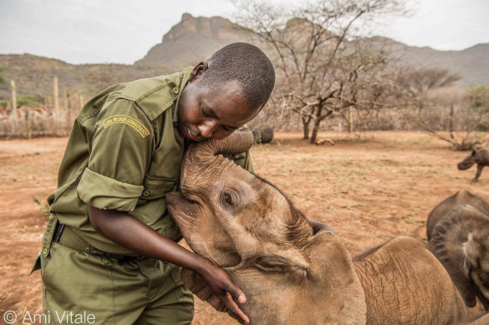 Wildlife keeper Kamara has spent 10 years at Lewa Wildlife Conservancy and is an expert in caring for orphaned animals, from baby rhinos to lions and now he is working at Reteti Elephant Sanctuary where he is raising an orphaned baby rhino but also gives love to the elephants when they need it. The team will work to rehabilitate these orphaned and abandoned elephants and reunite them with their wild herds which I think we can all agree is a great thing to do.