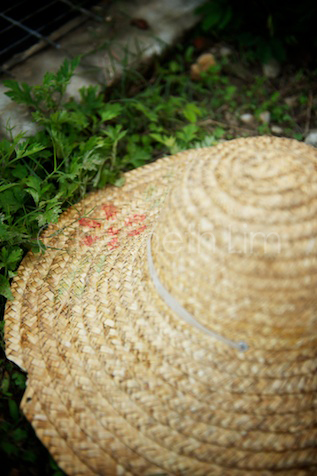 Hong Kong farmer's pan hat