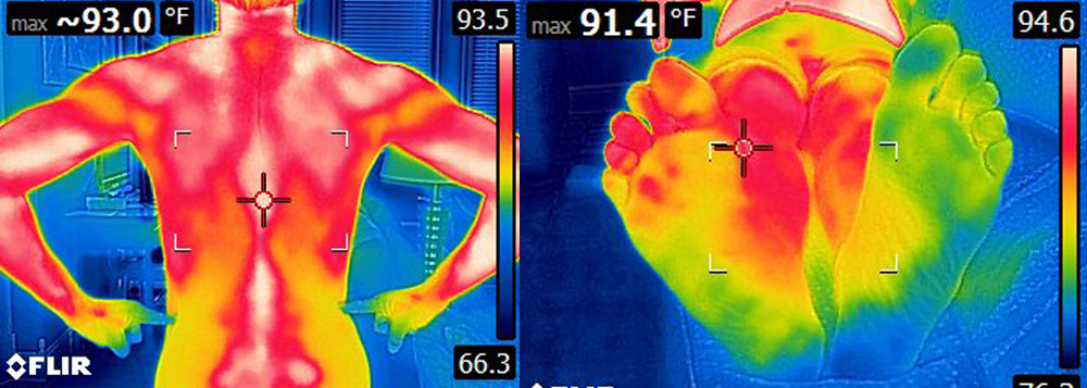 InfraRed Thermal Imaging Services.jpg