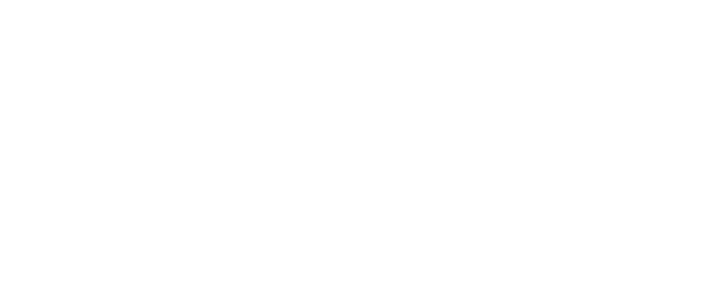 No Limit Agency