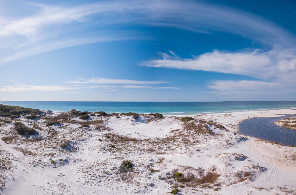Retreat Florida Scenic Dunes & Beach Preservation View.jpg