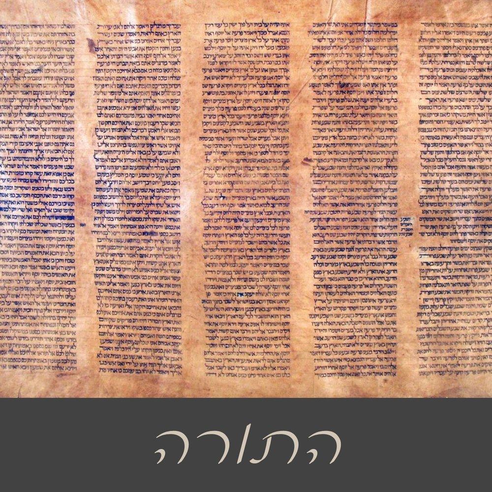 Torah (Law)