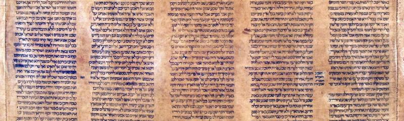 התורה - The Torah