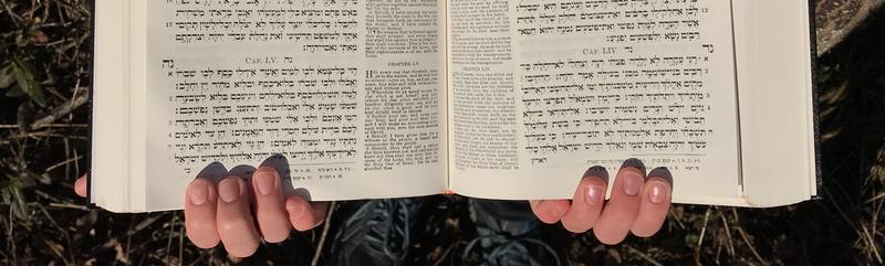 הנביאים - The Prophets