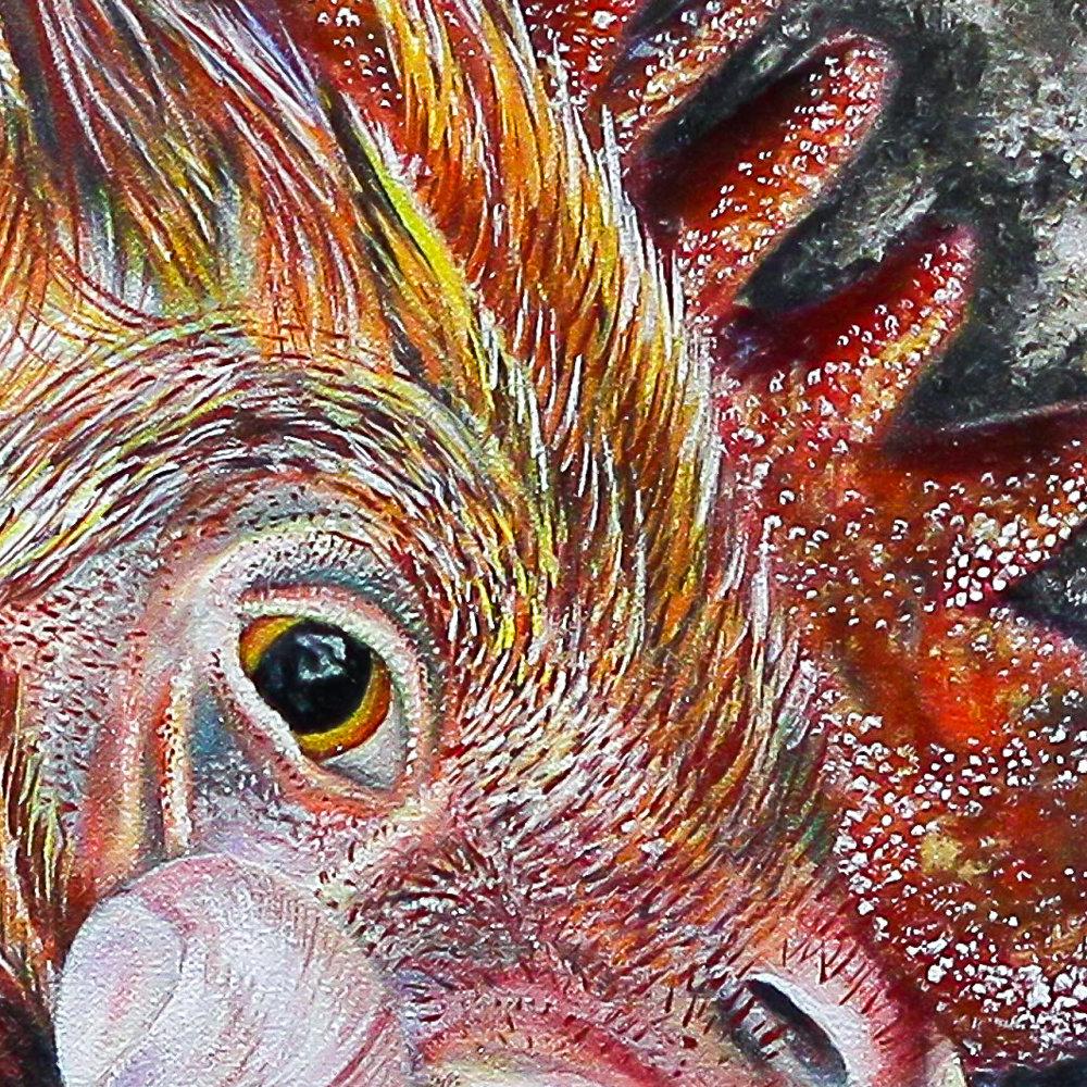 ChickenHead crop.jpg