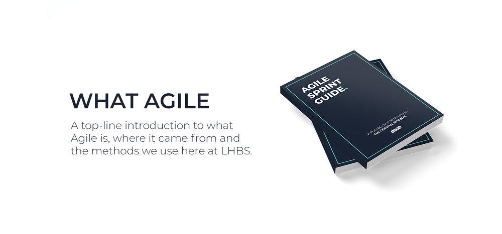 what-agile.jpg