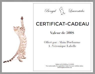 certificat-cadeau-bengal-laurentides-small.png