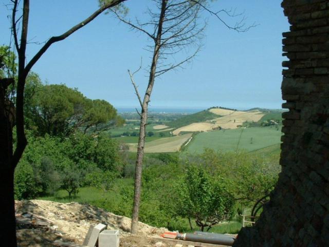 mot Siena (640 x 480).jpg