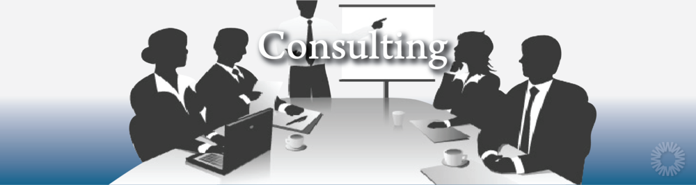 Header-Image-Consulting.png