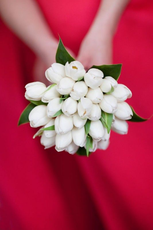 Bridesmaid Bouquets White Tulips