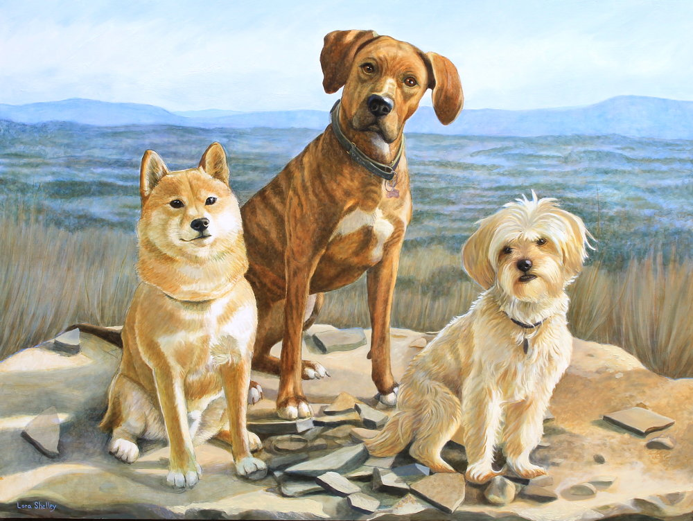 Kuma, Layla and Mischa - Oil on panel 36 x 48""