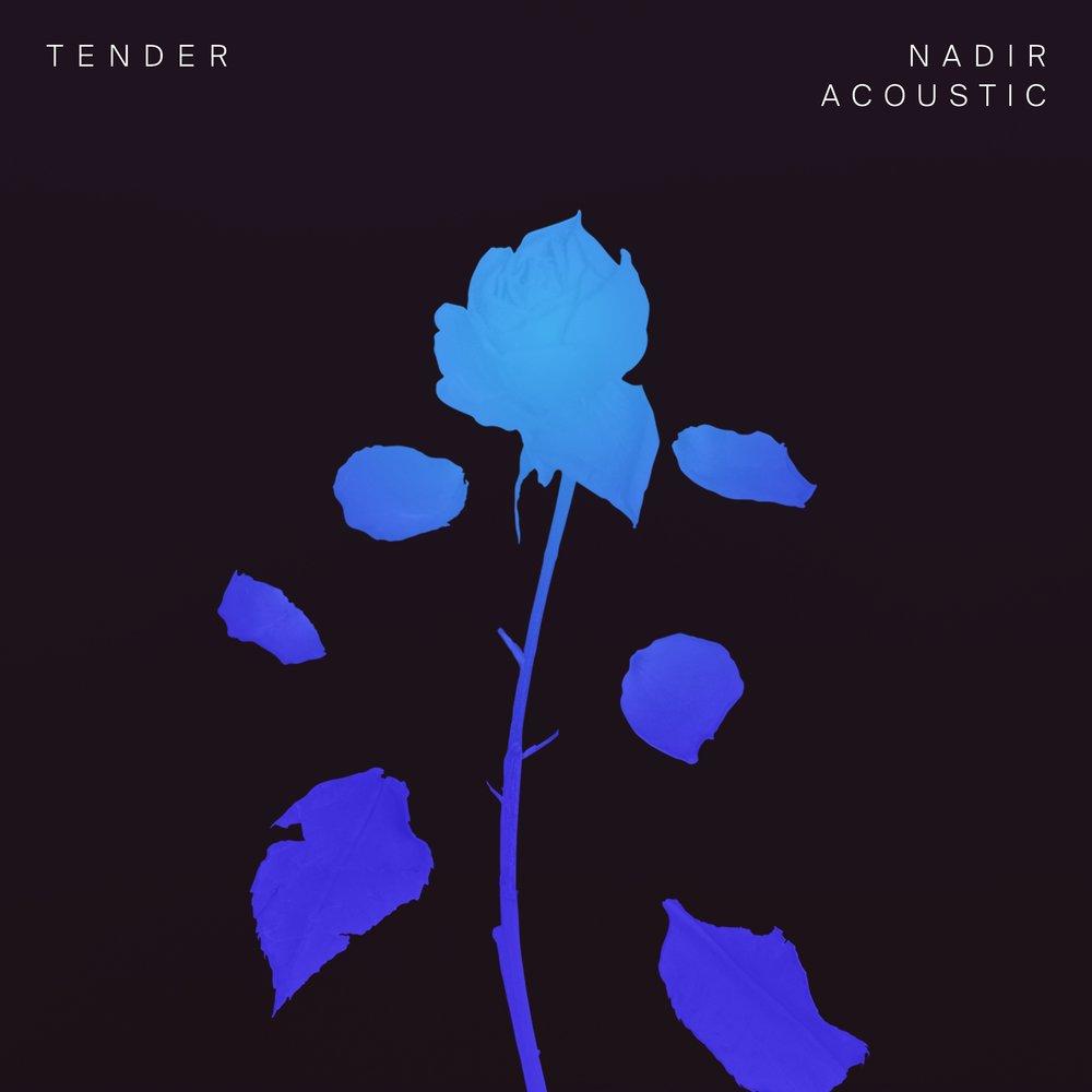 TENDER_Nadir-Acoustic_3000x3000_300dpi.jpg