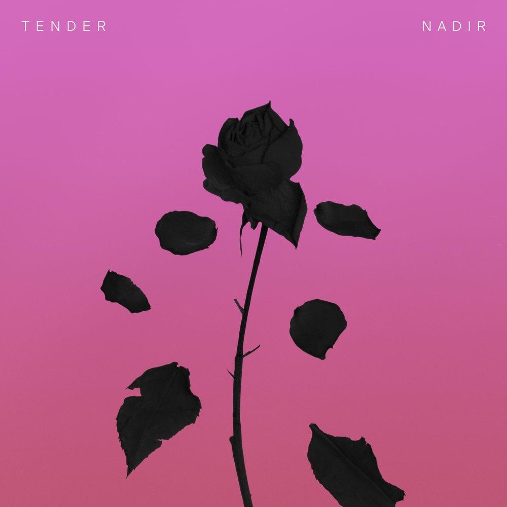 TENDER_Nadir_3000x3000_300dpi LZWcomp.jpg