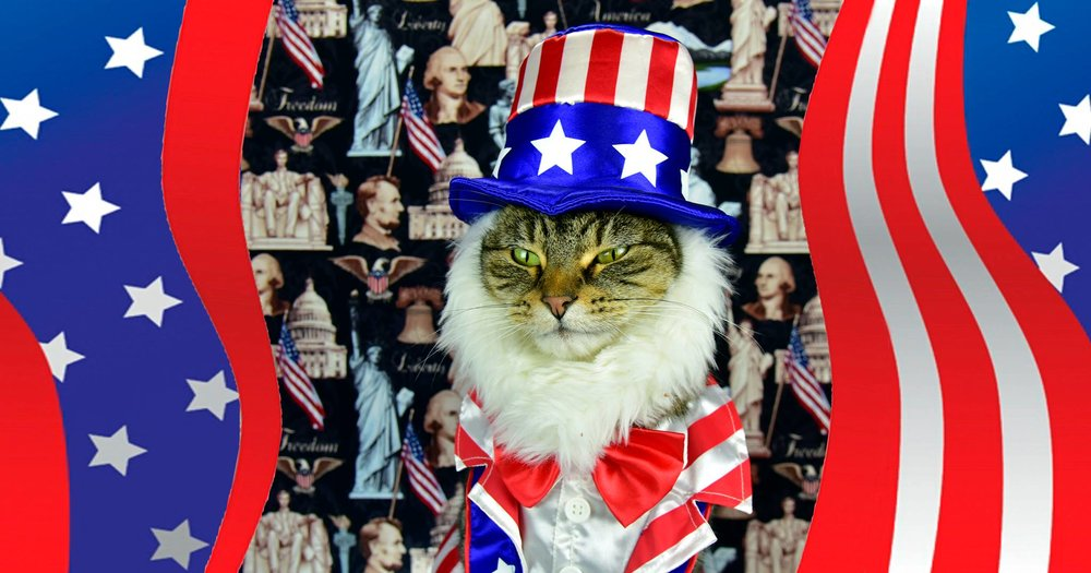 America: A History in Cats. Lecture with Paul Koudounaris -