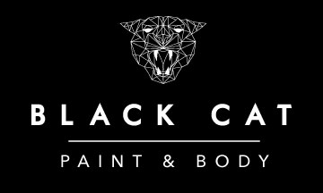 Black Cat Paint and Body