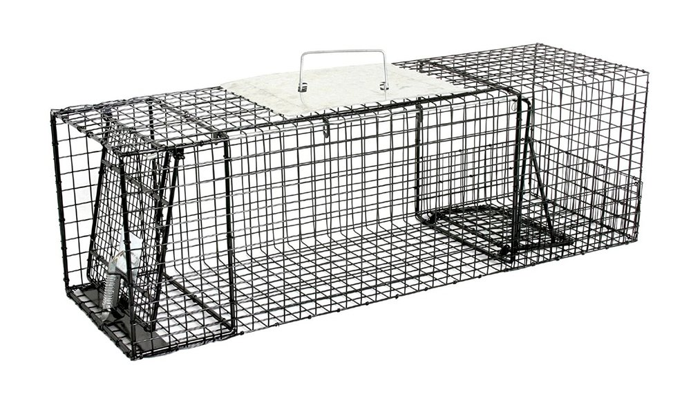 Humane Raccoon Trap ( Link )