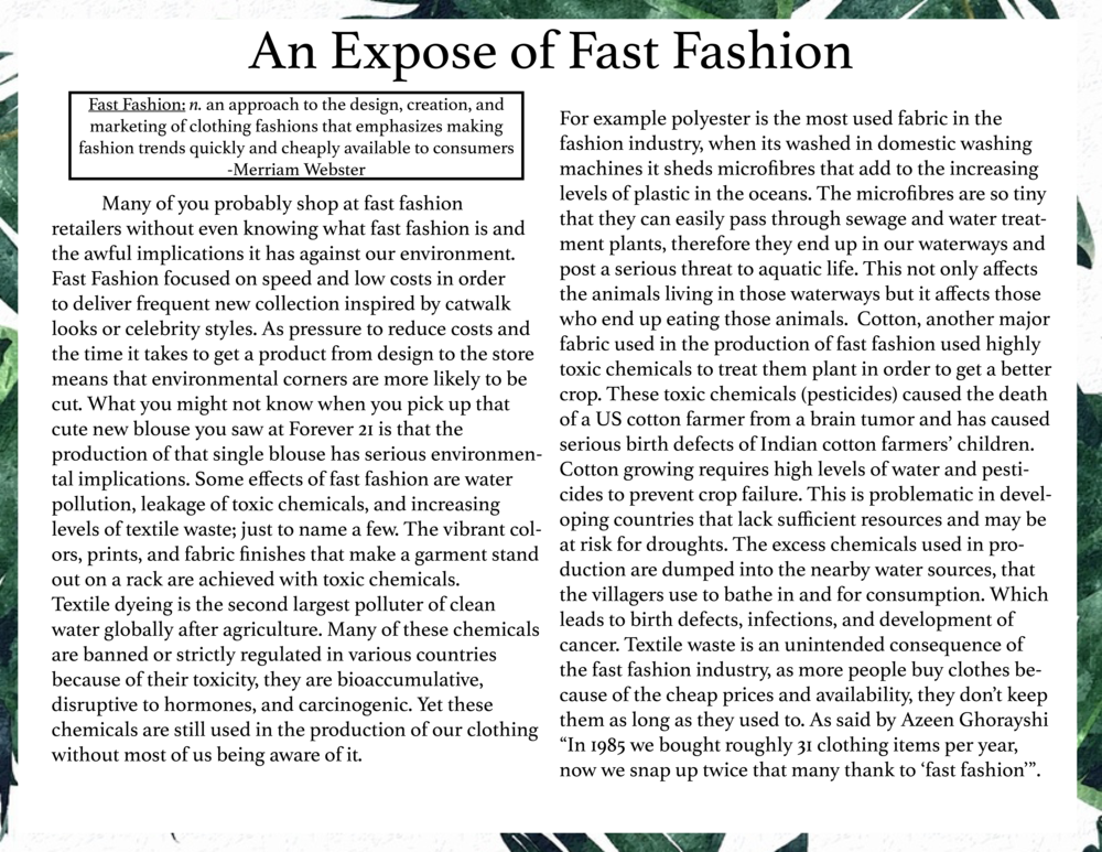 Expose of Fast Fashion I.png