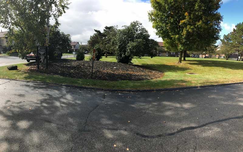 Roadside landscaped mulch bed with trees, landscape and lawn care by Ivanoff